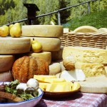 formaggio_capra_falcodelcilento
