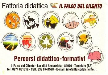 Speciale scuole: fattoria didattica